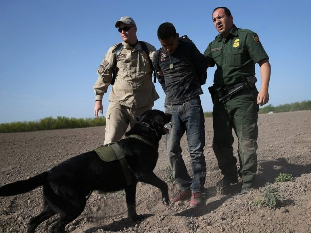 Border Patrol Agents arrest illegal alien - Getty Images John Moore