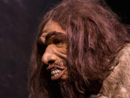 Caveman (Vincent Lit / Flickr / CC / Cropped)