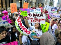 Dale Wilcox: Americans Want DACA to Expire, Not Amnesty