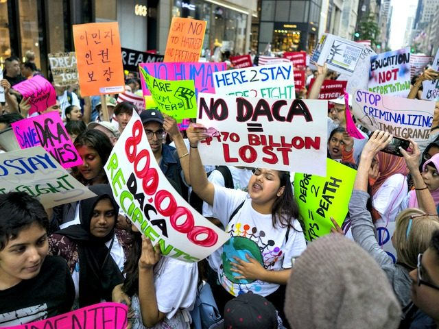 CEOs, Staff Put Pressure on Trump over DACA Decision