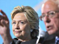 Hillary Hates Bernie AP