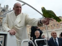 "Pope Francis holds a parrot shown by a pilgrim as he arrives for his general audience at St Peter's square on January 29, 2014 at the Vatican. AFP PHOTO / OSSERVATORE ROMANO RESTRICTED TO EDITORIAL USE - MANDATORY CREDIT ""AFP PHOTO / OSSERVATORE ROMANO"" - NO MARKETING NO ADVERTISING CAMPAIGNS …"