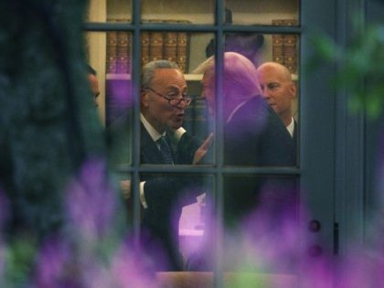 Schumer Trump White House deal (Alex Wong / Getty)