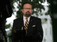 Gorka: 'Massive' Defeats for Islamic State in 'Scant Eight Months of Trump Administration'