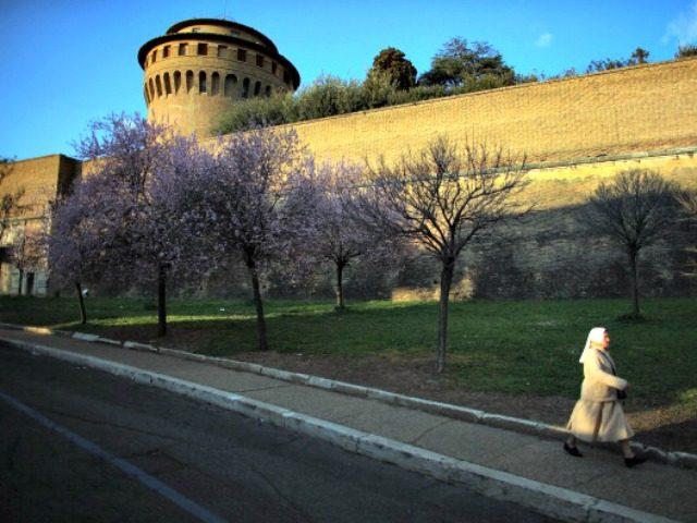 Vatican Wall Joe RaedleGetty Images