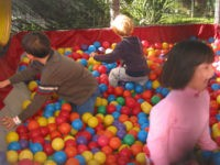 children playing in a ball pit