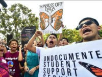 Young immigrants and supporters gather for a rally in support of Deferred Action for Childhood Arrivals (DACA) in Los Angeles, California on September 1, 2017. A decision is expected in coming days on whether US President Trump will end the program by his predecessor, former President Obama, on DACA which …