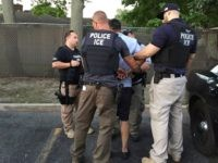 ICE officer arrest alleged criminal alien