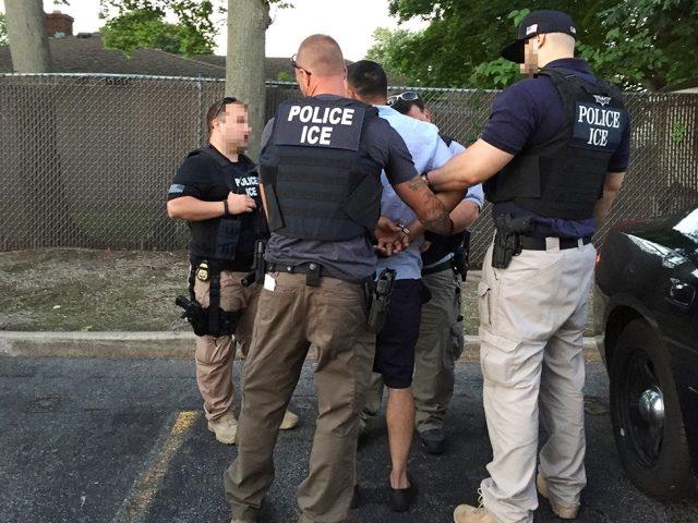 ICE officer arrest alleged criminal alien