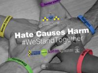 Hate Causes Harm