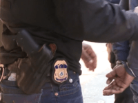 ICE officers arrest criminal alien in New York City.
