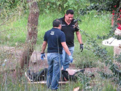 Michoacan murders