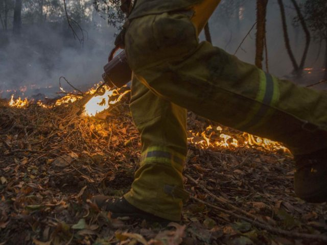 More Wine Country fires (David McNew / Getty)