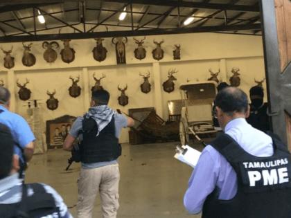 Tamaulipas Ranch