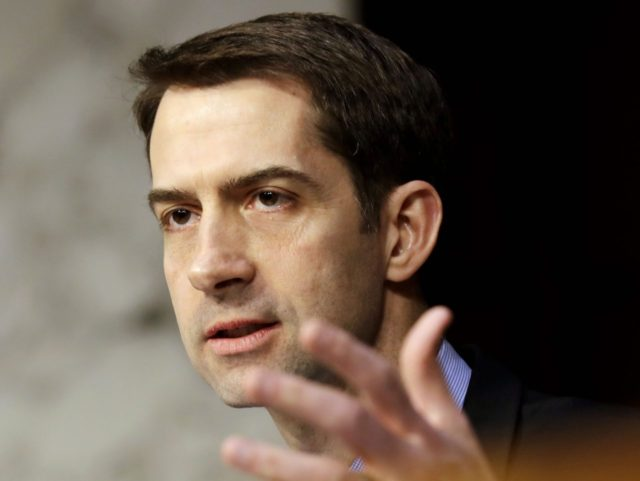 Tom Cotton (Jacquelyn Martin / Associated Press)