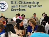 CIS Study: More Immigrants in 2016 Than Ever Before in American History