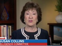 Sen Collins: Steve Bannon Is 'Not Helpful,' American People Tired of His 'Over-the-Top Rhetoric'
