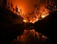 fire 1fa6q9o-640x427
