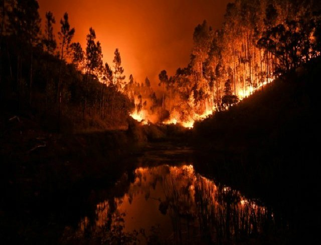 Orange County Canyon Fire Burning Homes Forcing Thousands To Evacuate Breitbart