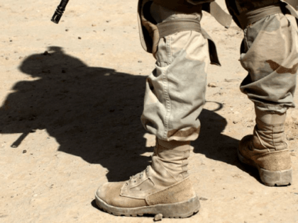 Three US soldiers and one from another nation were killed when a joint US-Niger patrol was ambushed near the border with Mali in southwest Niger, the Pentagon confirmed
