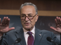 Chuck Schumer 'Urging' Dems to Avoid Gun Control as Budget Debate Begins