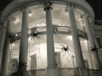At the White House, where the south portico has decorative spiders and webs for Halloween.