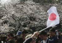A visitor waves a Japanese flag near blooming cherry blossoms at Ueno Park in Tokyo, Tuesday, April 4, 2017. Cherry blossom season has officially kicked off in Tokyo, marking the beginning of spring for the Japanese. (AP Photo/Eugene Hoshiko)
