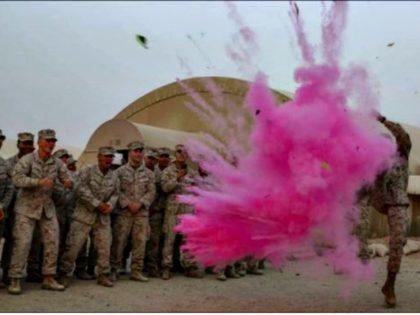 Baby Gender Reveal Marine Base