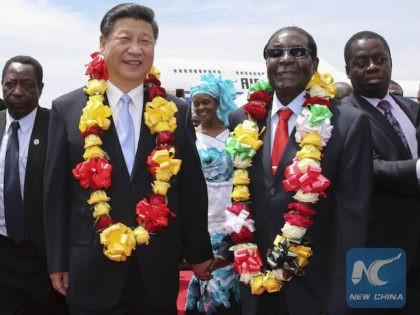 China Claims 'Dwindling' Investment in Zimbabwe amid Mugabe Chaos