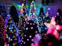 Fake Christmas trees (Johannes Eisele / AFP / Getty)
