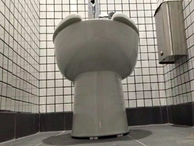 Gender Neutral High School Toilet