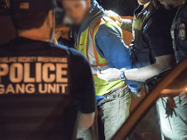ICE rounds up more than 40 MS-13 members in NY