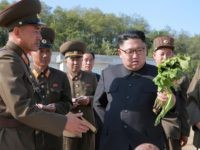 Kim Jong-un vegetable (STR / AFP / Getty)