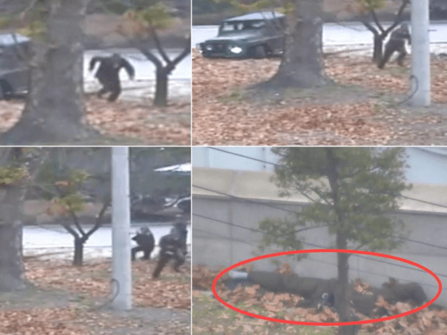 This combination of images made from Nov. 13, 2017, surveillance video released by the United Nations Command shows a North Korean soldier running from a jeep and then shot by North Korean soldiers in Panmunjom, North Korea, before collapsing across the border in South Korea. A North Korean soldier made …