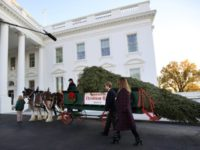WATCH LIVE: President and First Lady Trump Receive WH Christmas Tree