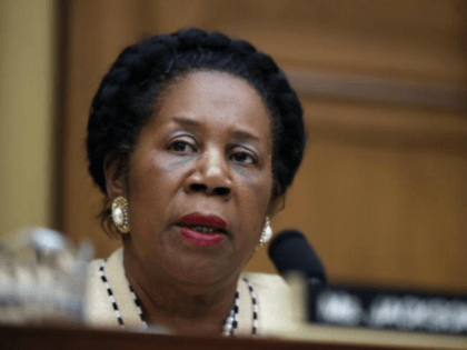 Democrat Sheila Jackson Lee Tweets Congratulations to 'Doug Moore,' Links Victory to NFL Anthem Protesters
