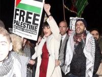 Bella Hadid Free Palestine Instagram