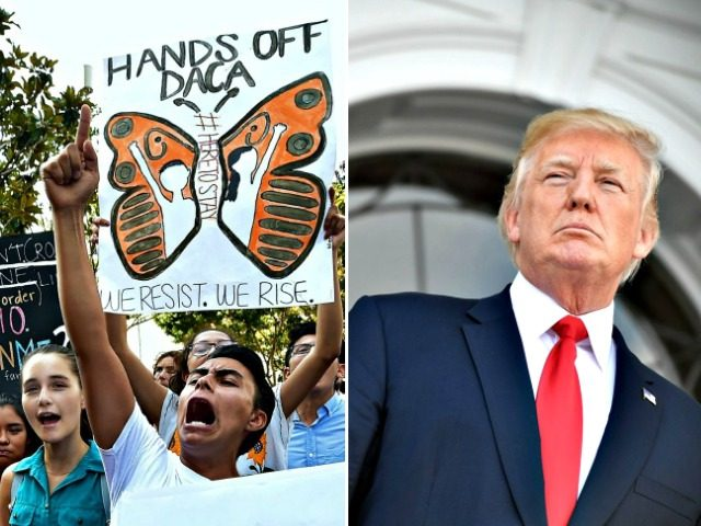 DACA Activists, Trump Split