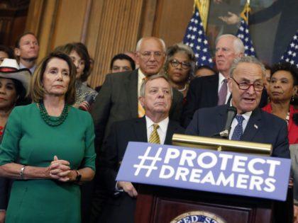 Democrats 2018 (Aaron P. Bernstein / Getty)