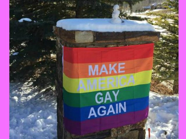 Make America Gay Banner Pence