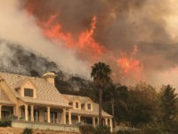 California Wildfires (Mike Eliason / Associated Press)