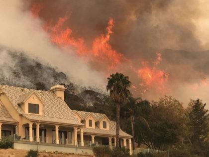 California Wildfires (Mike Eliason / Associated Press)