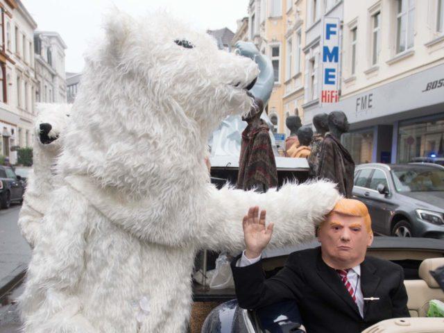 Polar Bear (Bernd / AFP / Getty)