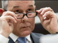 Scott Pruitt, glasses