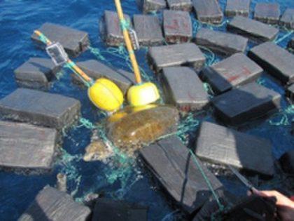 Sea Turtle with Cocaine - USCG photo