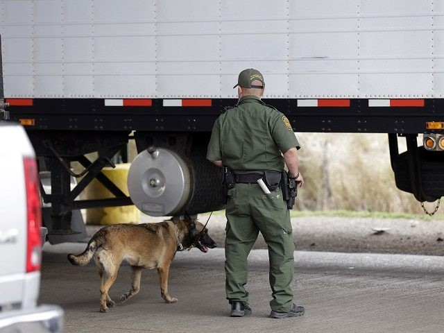 A U.S. Customs and Border Patrol agent and K-9 security dog keep watch at a checkpoint station, Friday, Feb. 22, 2013, in Falfurrias, Texas. (AP Photo/Eric Gay)