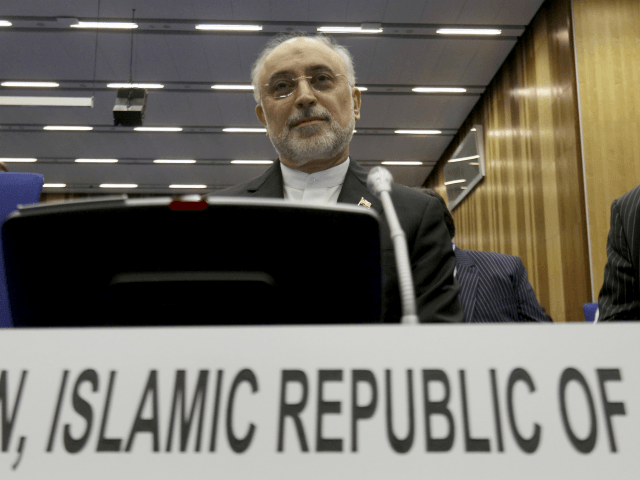 Head of Iran's Atomic Energy Organization Ali Akbar Salehi waits for the beginning of the general conference at the International Atomic Energy Agency, IAEA, in Vienna, Austria, Monday, Sept. 18, 2017. (AP Photo/Ronald Zak)