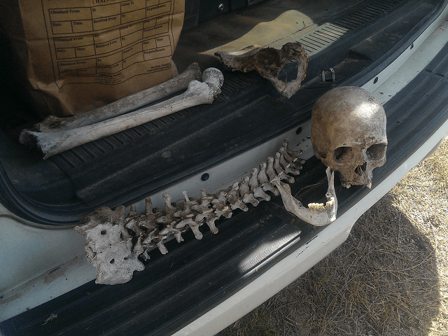 Skeletal Remains found in Brooks County, Texas.