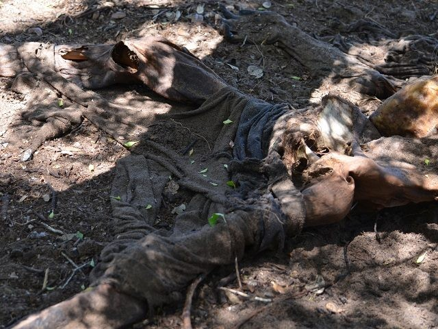 Skelatal remains in Brooks County. File Photo: Bob Price/Breitbart Texas