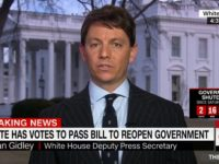 WH Spox Hogan Gidley Slams Graham-Durbin Amnesty Plan — 'They Want Open Borders'